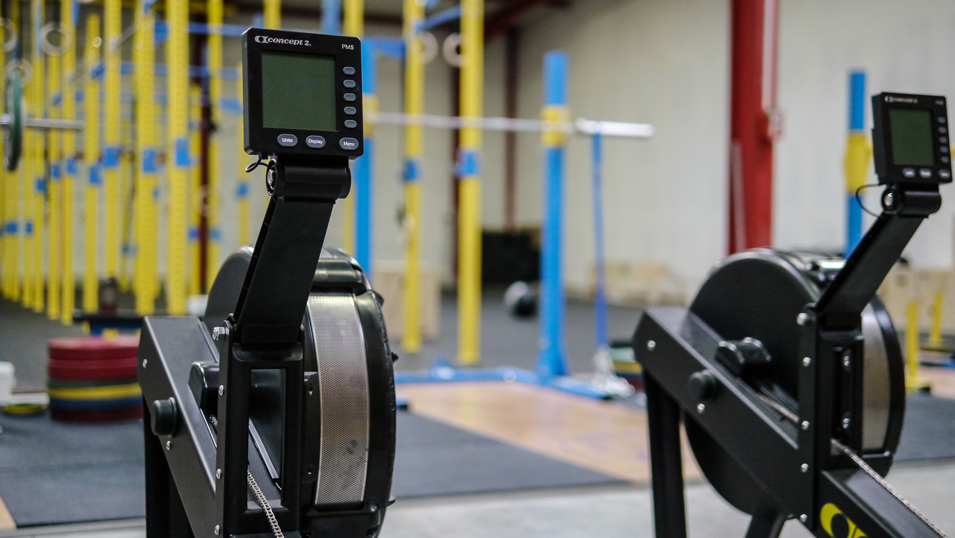 crossfit electron zone free access